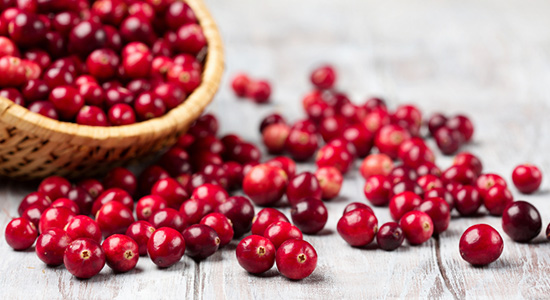 הגרגרים האדומים של פרי החמוציות הצליחו לכבוש מקום של כבוד על מדפי ה-super food, בזכות שלל הרכיבים המזינים שהם מכילים. אז מה כל כך טוב בחמוציות?