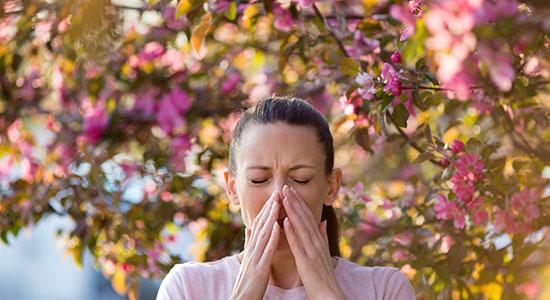 איך נתמודד עם תסמיני האלרגיה העונתית?