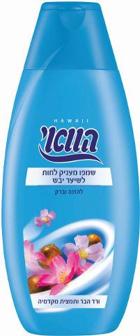 שמפו מעניק לחות לשיער יבש