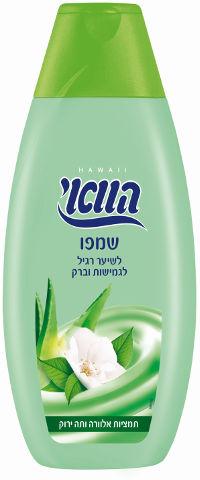 שמפו מטפח לשיער רגיל