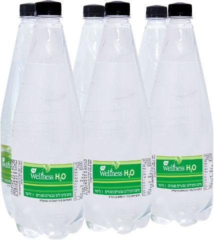 לייף וולנס מים מינרלים טבעיים מוגזים