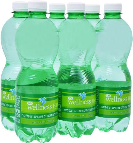 Wellness מים מינרלים טבעיים מוגזים