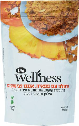 Wellness גרנולה עם פפאיה, אננס וצימוקים