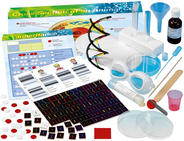 ערכת מדע הגנטיקאי הצעיר