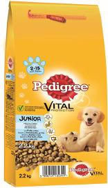 PEDIGREE מזון לגורי כלבים עוף ואורז