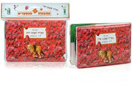 בייבי סמארט ספר אמבט - האריה שאהב תות