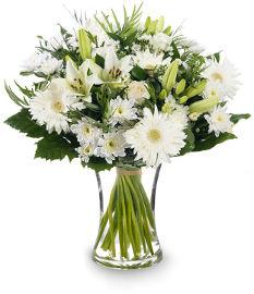 פרחי עירית שבתות וחגים