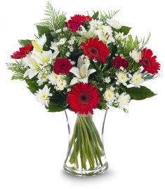פרחי עירית חגיגה רומנטית