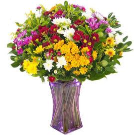 פרחי עירית פריחות האביב