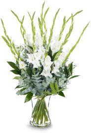 פרחי עירית אור הלבנה