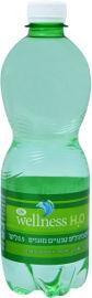 Life Wellness מים מינרלים טבעיים מוגזים
